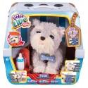 Little Live Pets Moje vysněné štěňátko Ruffles